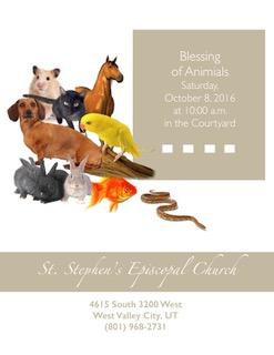 animal-blessing-2016